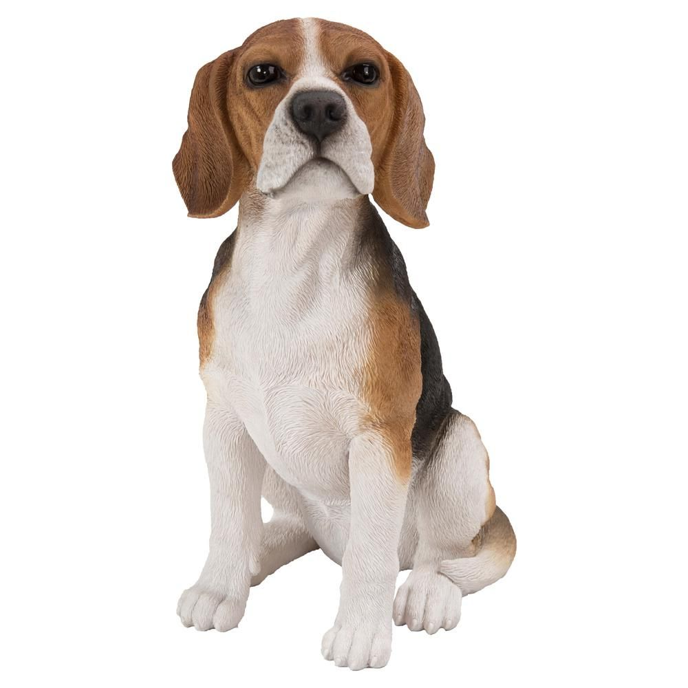 Hi Line Gift Beagle Sitting Statue 87763 B White Beagle Dog