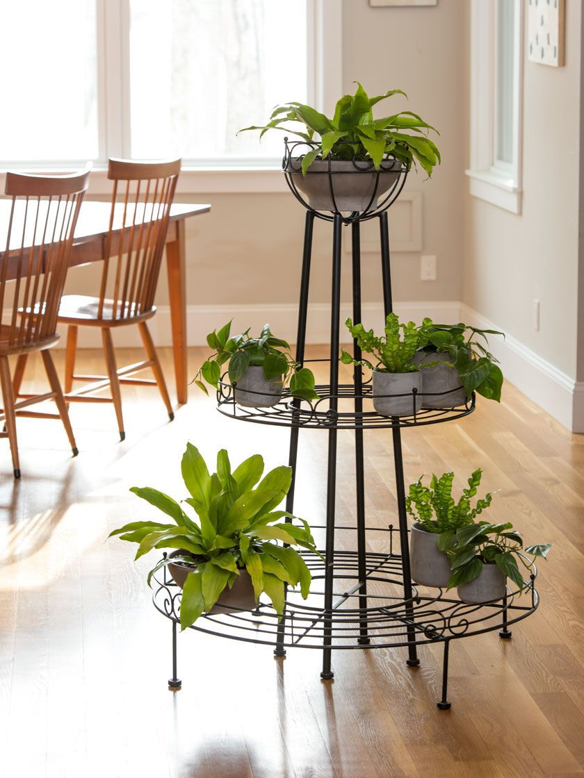 Pin On Planters Plant Stands