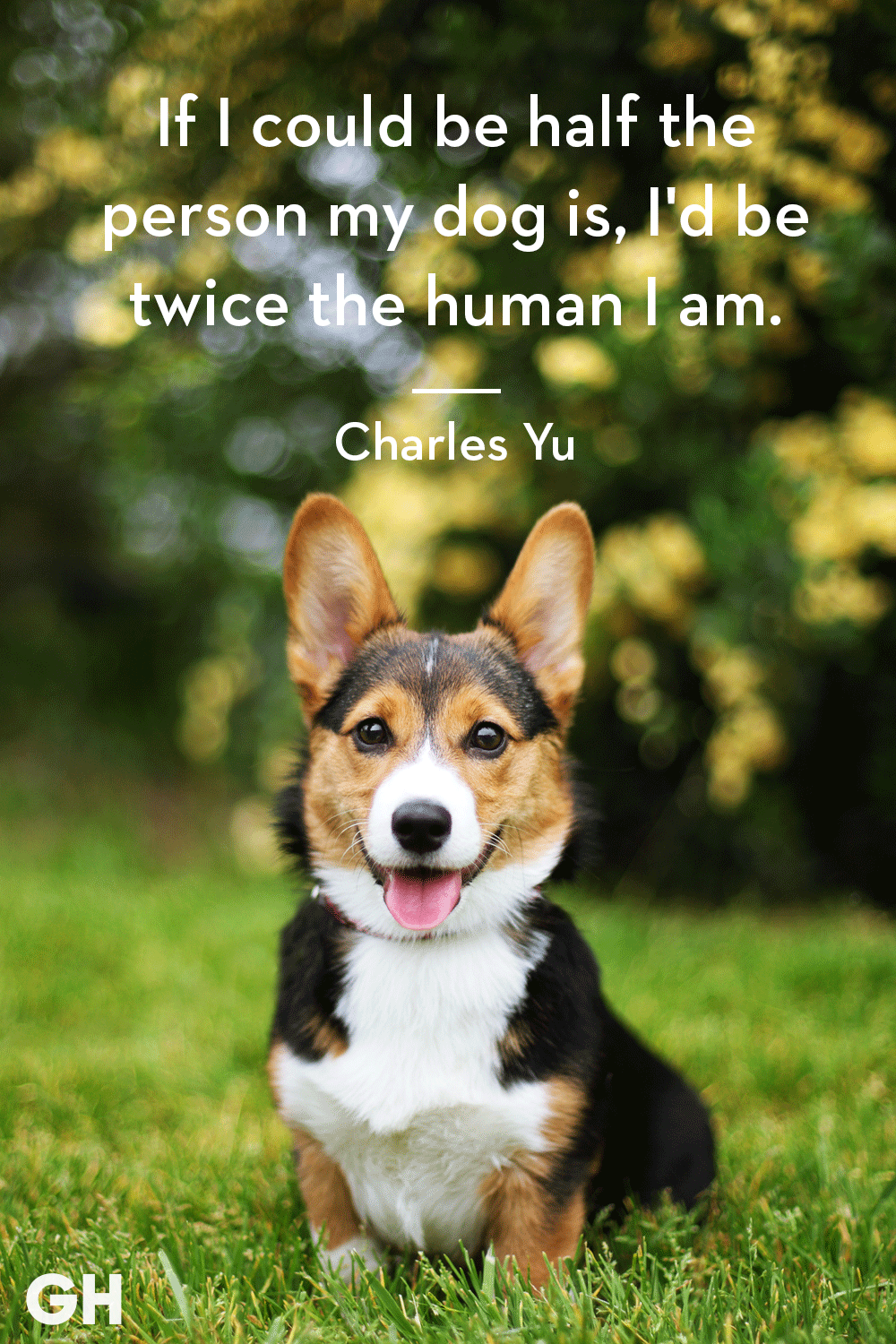 30 Dog Quotes That'll Inspire You to Hug Your Pup a Little