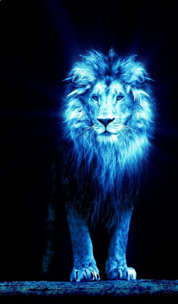 Lion of Judah Prophetic Art painting in blue  Wow, this is