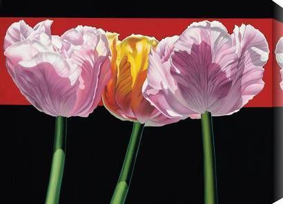Tulips by Janice Porter Marckstein | Fine #Art Prints | #GalleryDirect
