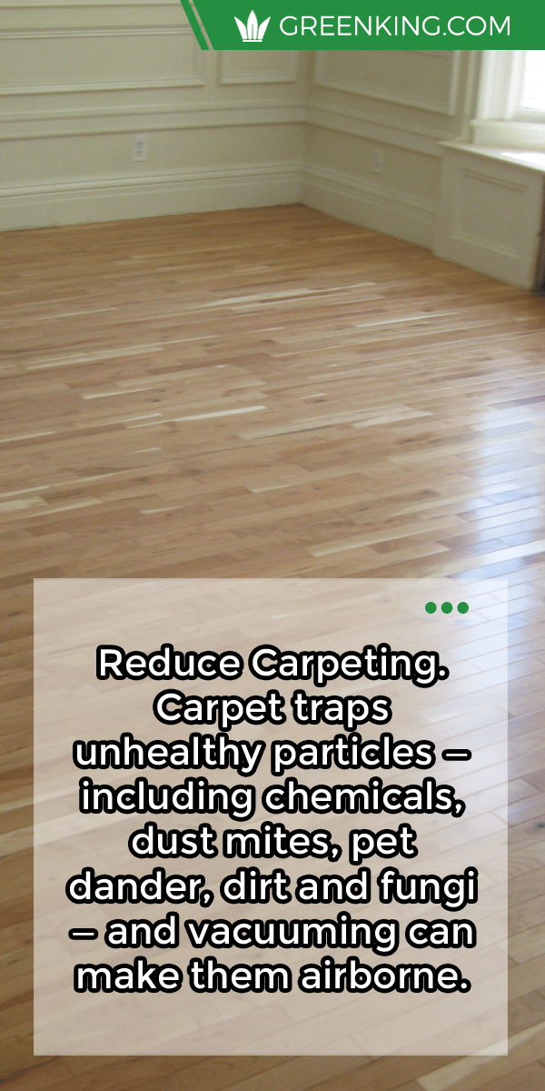 Reduce Carpeting Carpet Traps Unhealthy Particles Including Chemicals Dust Mites Pet Dander Dirt And F Diy Cleaning Solution Dust Mites Good Health Tips