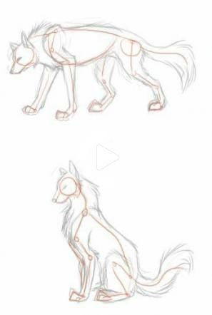 Photo of Trendy drawing wolf poses Ideas