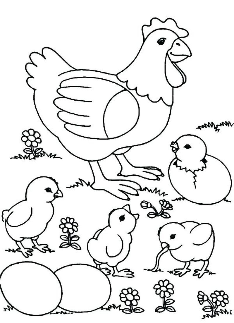Cute Chicken Coloring Pages PDF for Children - Coloringfolder.com