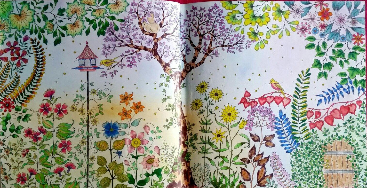 Primeiro colorido do livro Jardim Secreto.