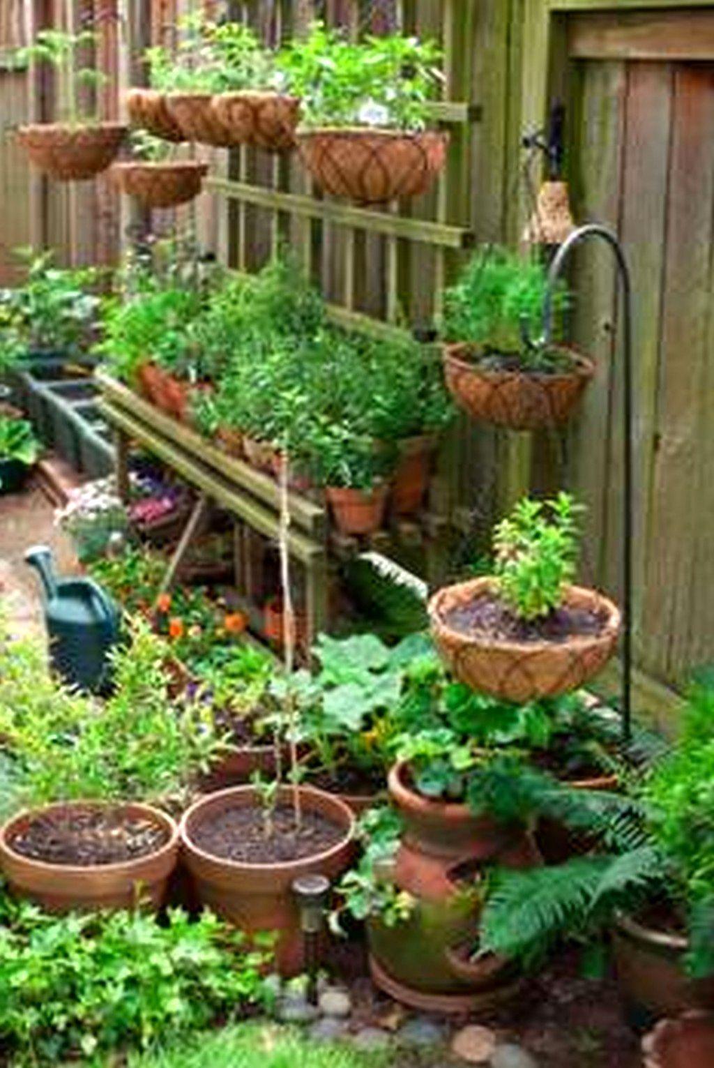 Vegetable Garden Design Plans Philippines Creative Vegetable