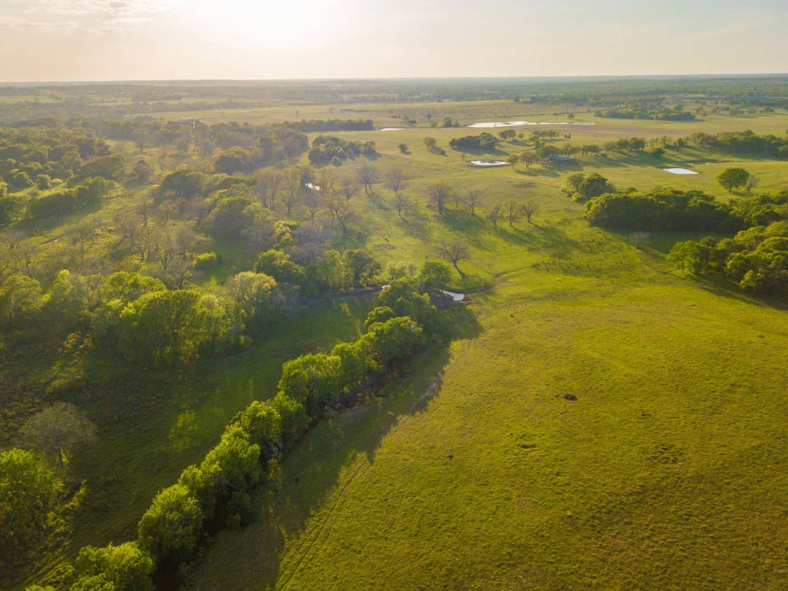Equestrian estate for sale in lee county texas