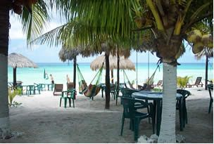 The Cozumel Beach Club Scene List Of Diffe Clubs With Restrooms And Showers Food Drinks Are Reasonably Priced