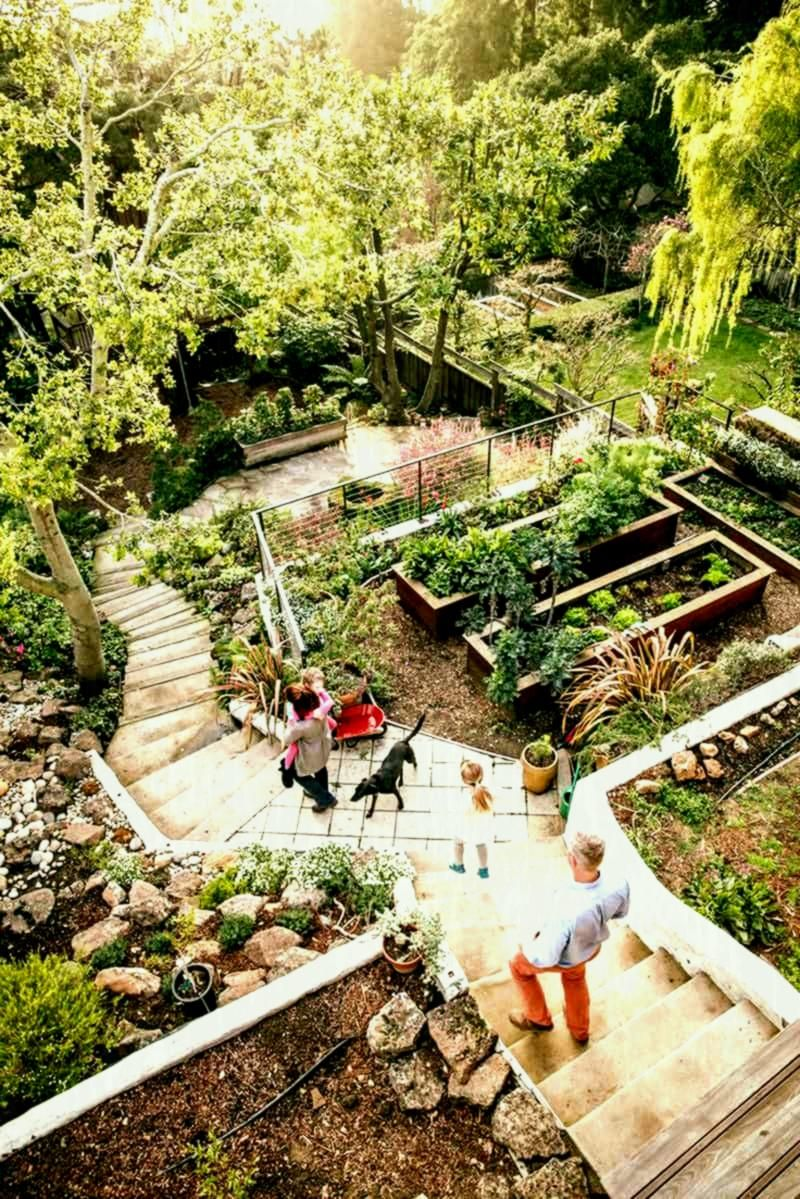 Landscape Design Is An Independent Career As Well As A Design As Well As Art Practice Practi Tropical Landscape Design Patio Landscape Design Landscape Design