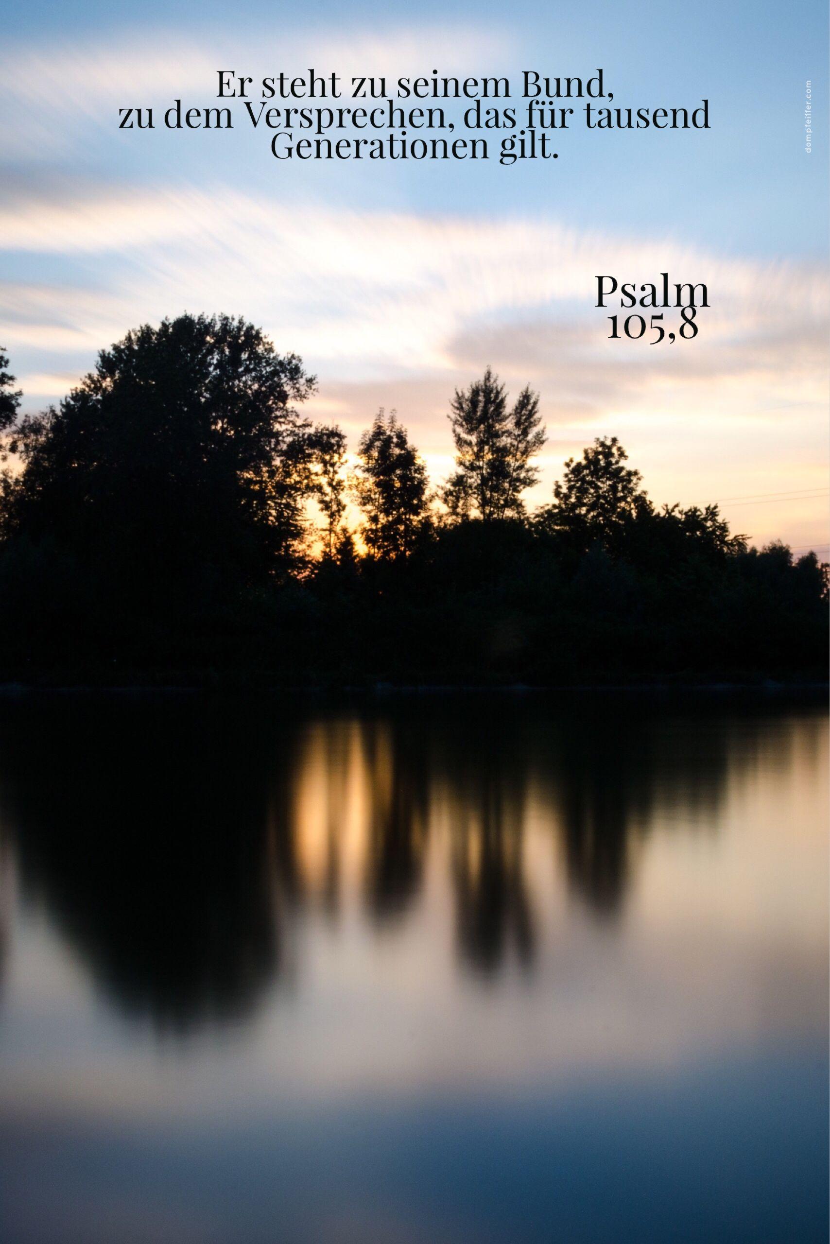 Hat #Gott mich vergessen? Psalm 105,8 #jesus #glauben #bibel ...