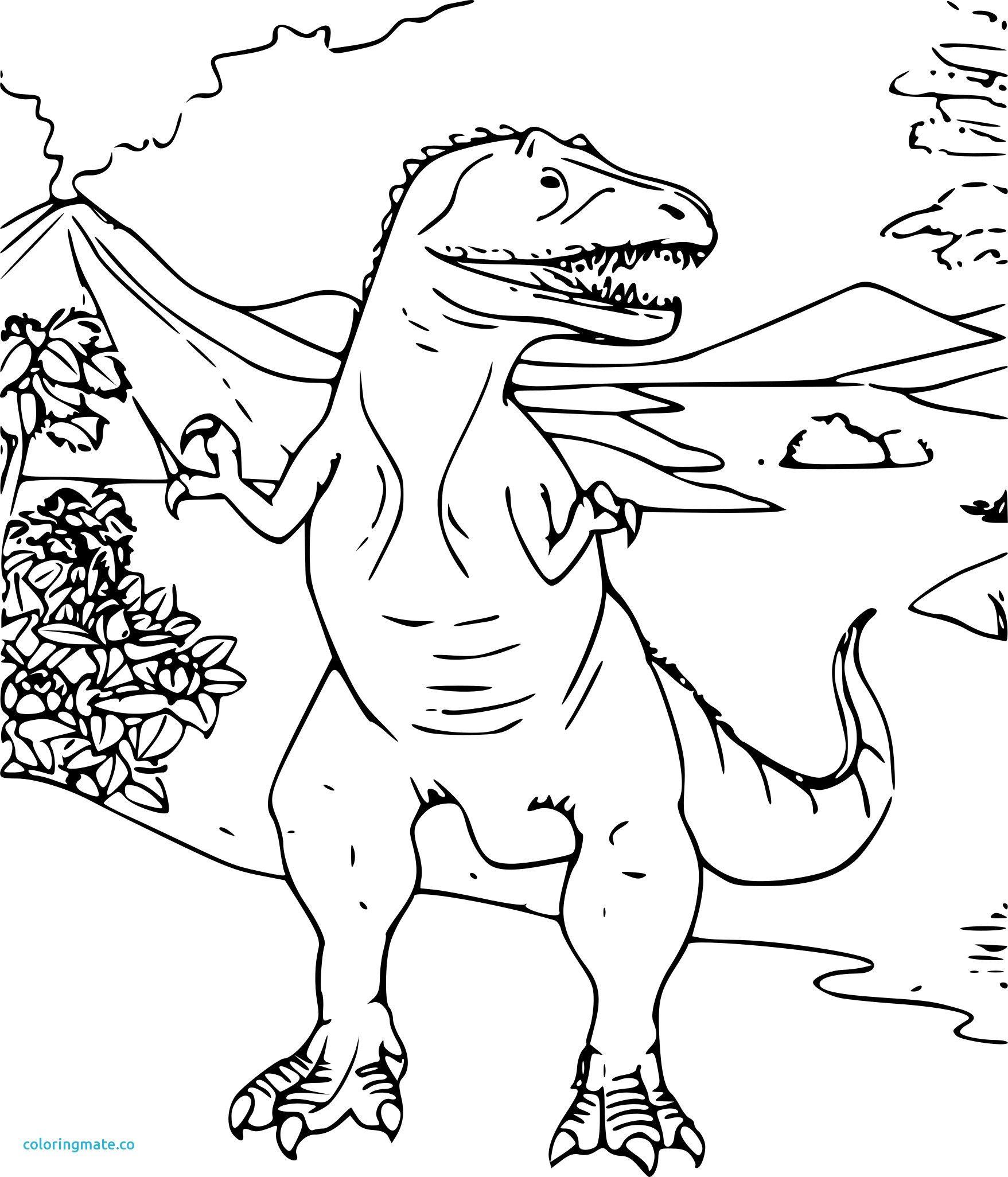 Coloriage Dinosaure Gratuit Colorier Les Enfants