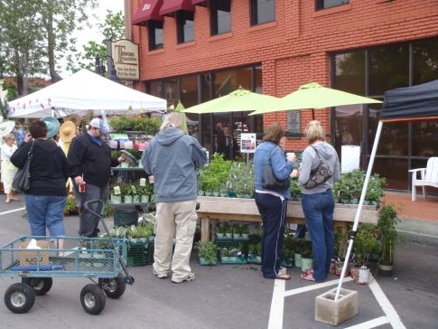 Here's TheGardenTrug.com at the April Jenks Herb Fest!  Get ready for Spring - we have lavender & rosemary now!