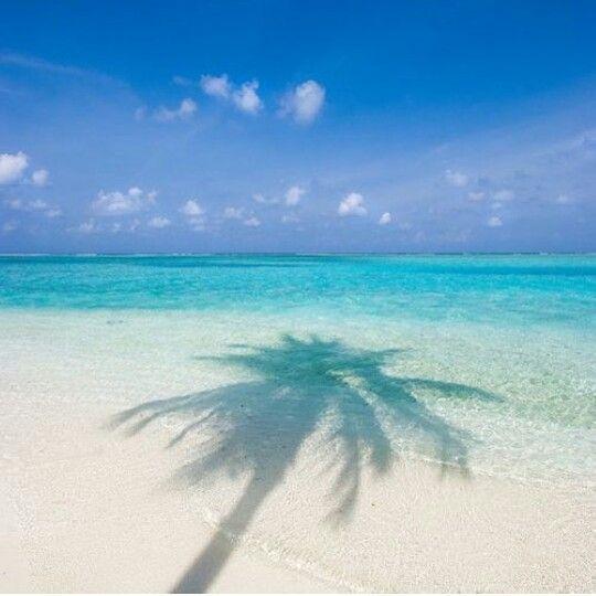 Beach Haven Topanga Swim Beach