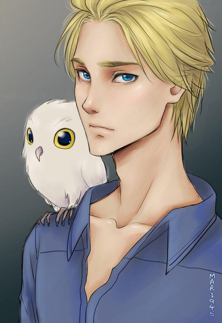 Owl by Mari945 on DeviantArt