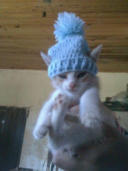 Gorrita para miau a crochet