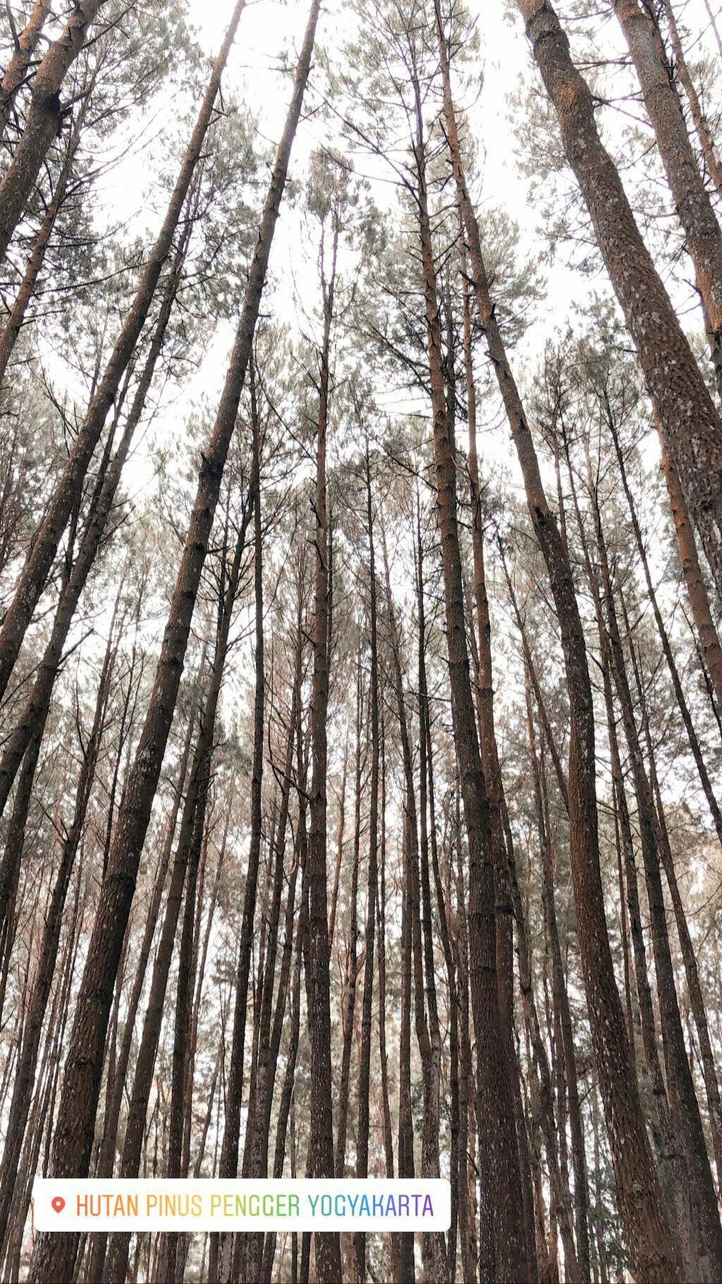 Pin Oleh Alya Putri Di Holi Pemandangan Fotografi Perjalanan Fotografi Alam