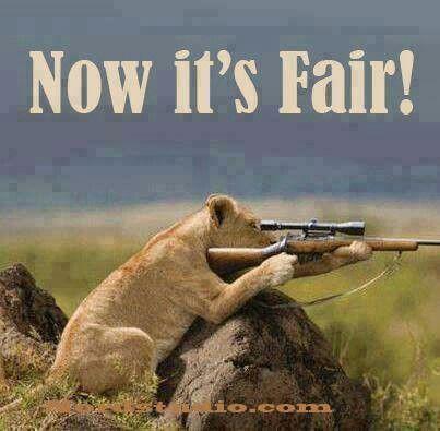 Boy hunter bring it on
