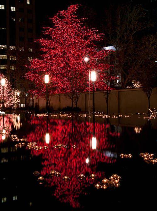 Reflection Photos * via life is very beautiful