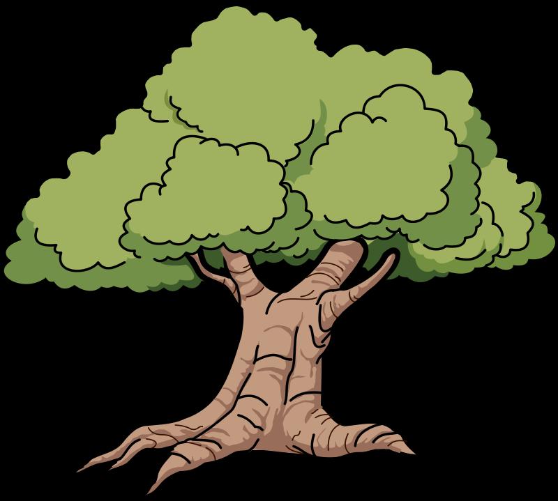 Free To Use Public Domain Trees Clip Art Cartoon Trees Tree Illustration Tree Clipart