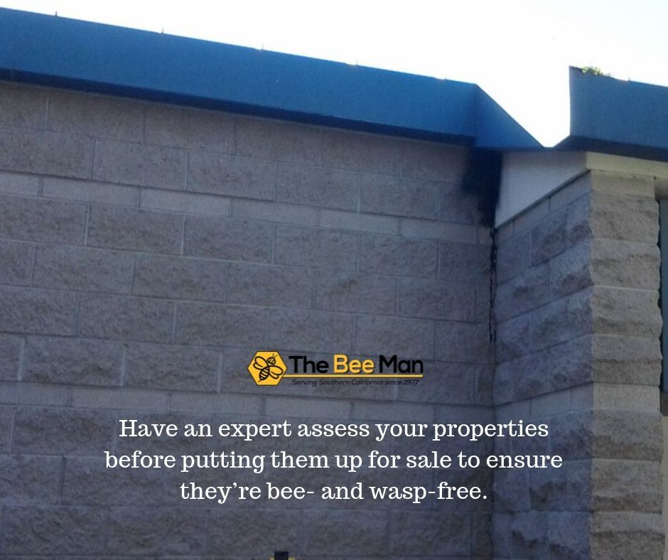 Have an expert assess your properties before putting them