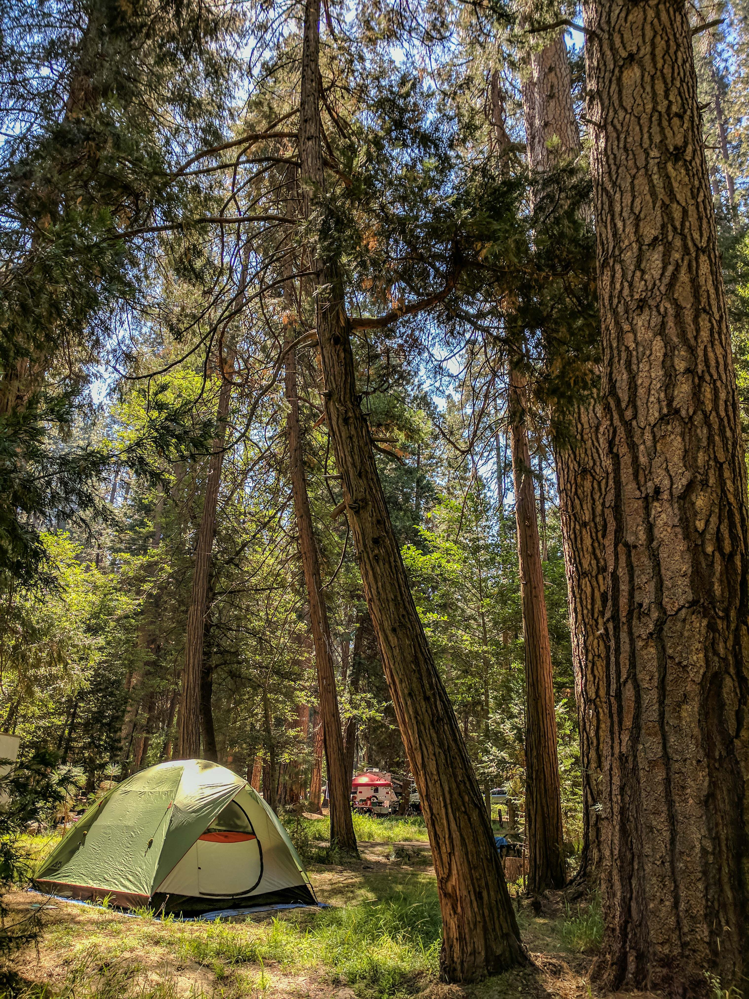 My camping setup for living for three months in a tent in ...