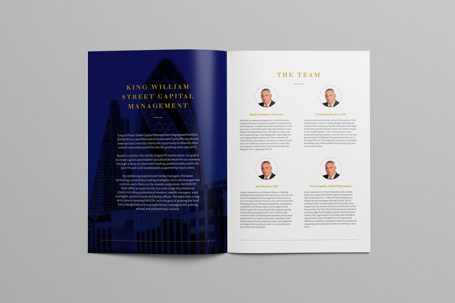 Design a high end marketing brochure for a start up fund by Shwin