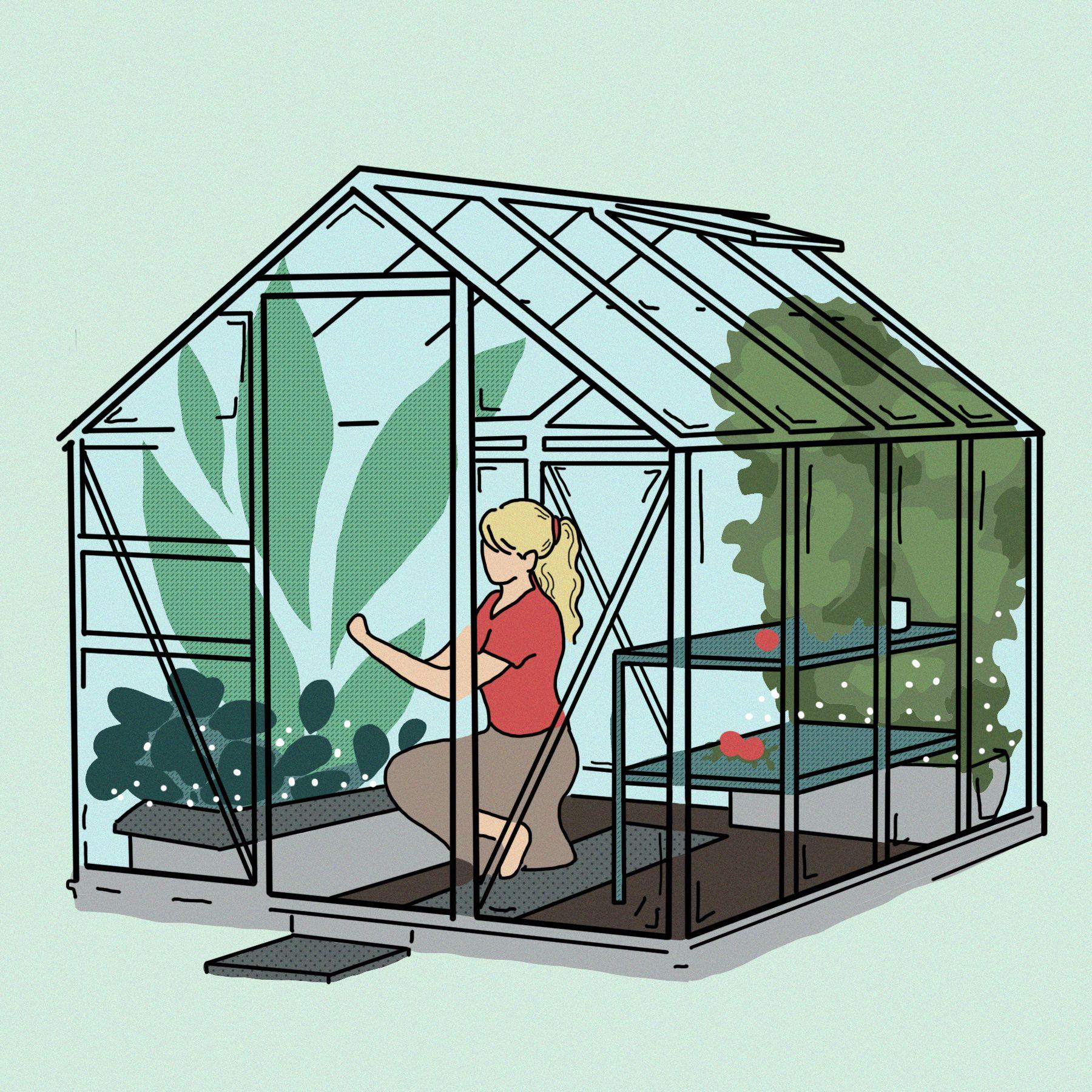 #glass #house #green #greenhouse #plants #gardening # ...