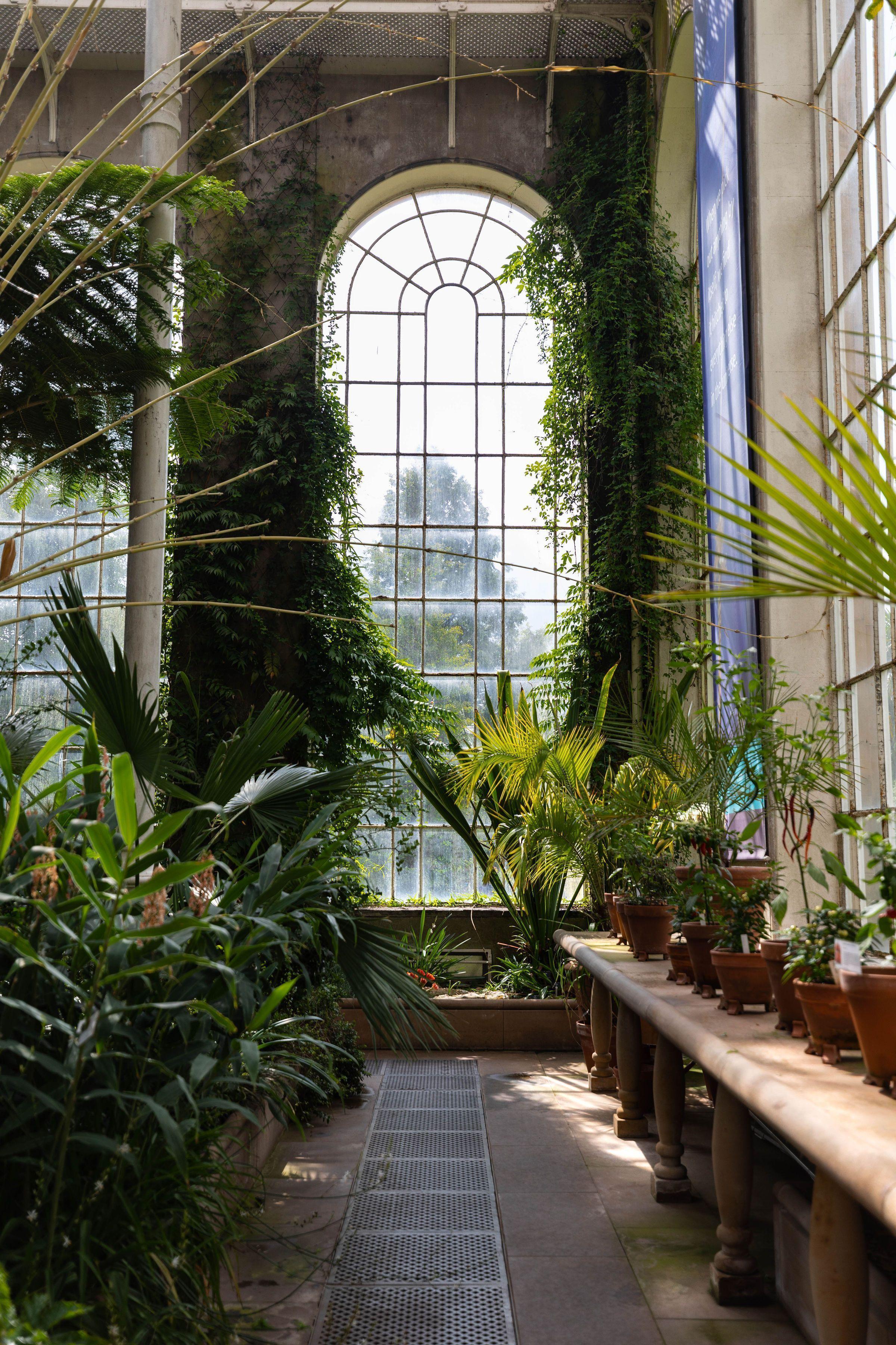 Visiting Royal Botanic Garden Edinburgh Scotland Botanicgarden Temperate Palm House Glasshouse At R Botanic Gardens Edinburgh Botanical Gardens Garden Design