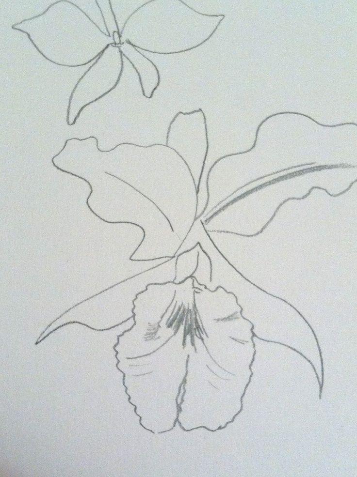 1544cf482cfe7 Colombian Flower Tattoo Pin cataleya colombian flower cattleya ...