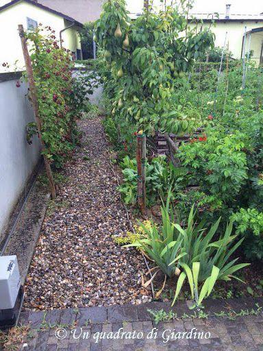 Costruire un orto rialzato cassoni vasche per orto rialzato le foto di un amico come fare - Costruire un giardino ...