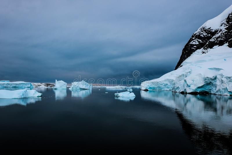 Antarctica in winter stock image. Image of killer, seagulls – 110043075