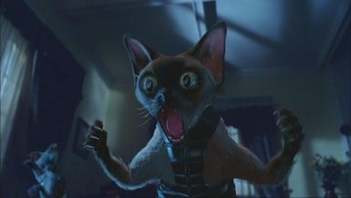 Review Cats Dogs Au Dvd R4 Dog Cat Cartoon Cat Cats