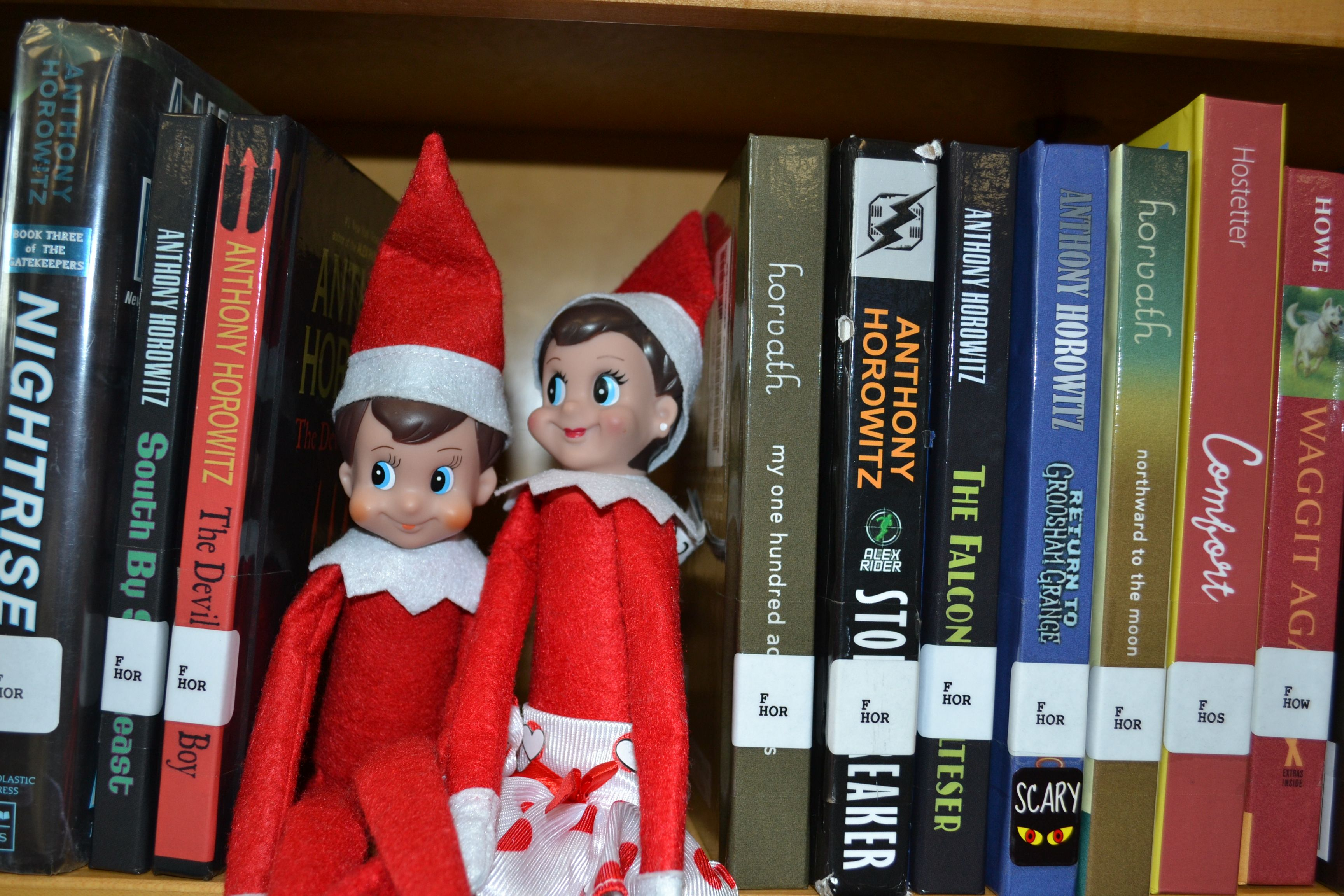 Use The Elf On The Shelf For The Library We Would Have A Clue