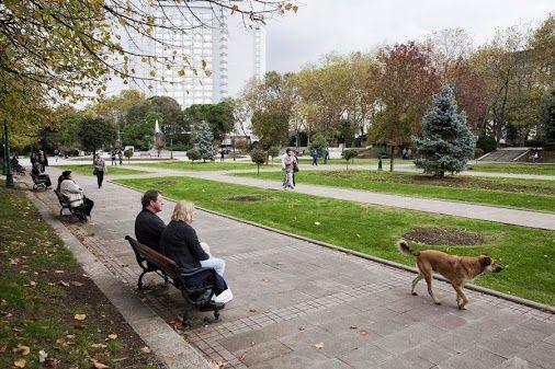 İşte günün ilk sorusu!  Bu fotoğraf, İstanbul'un hangi önemli merkezine aittir?  A ) Mecidiyeköy  B ) Taksim Gezi Parkı  C ) İkitelli  D ) Maslak   Ödüllü yarışmalarımıza hemen katılmak için: www.mrmaana.com  ücretsiz üyelik, sınırsız yarışma hakkı