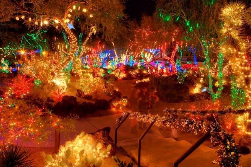 Christmas at the Ethel M cactus garden in Henderson
