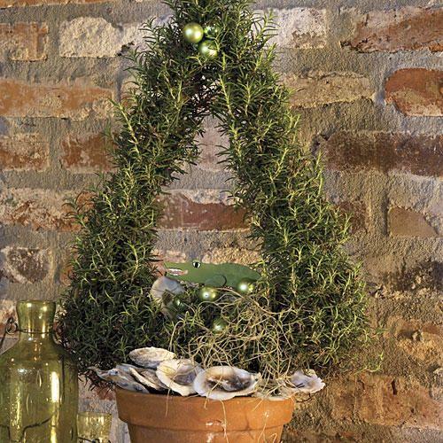 Cajun Christmas Decorating Ideas Oyster shells, Christmas eve and - southern living christmas decorations