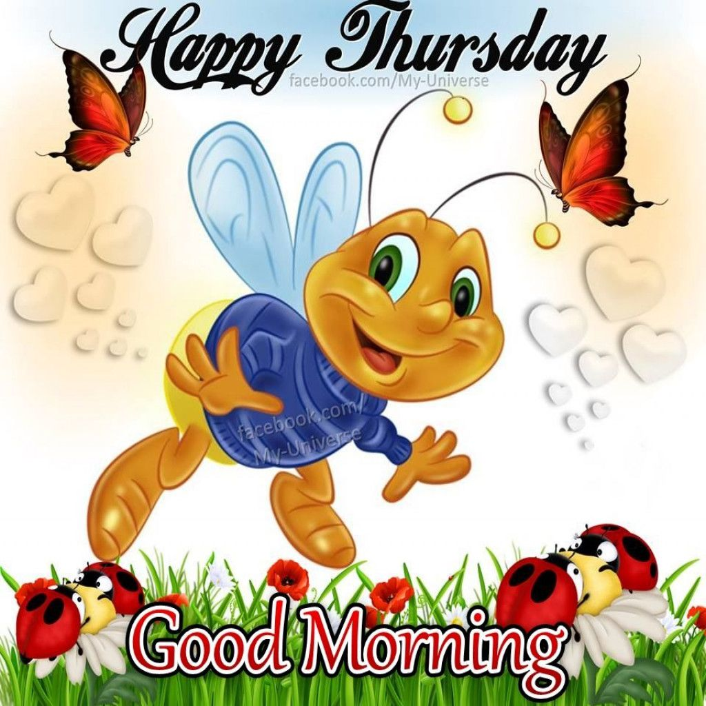 Good Morning Thursday Have A Great Day Guten Morgen Wochentage Grusse