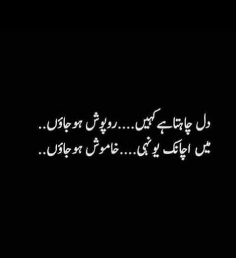 Best Funny Urdu 6