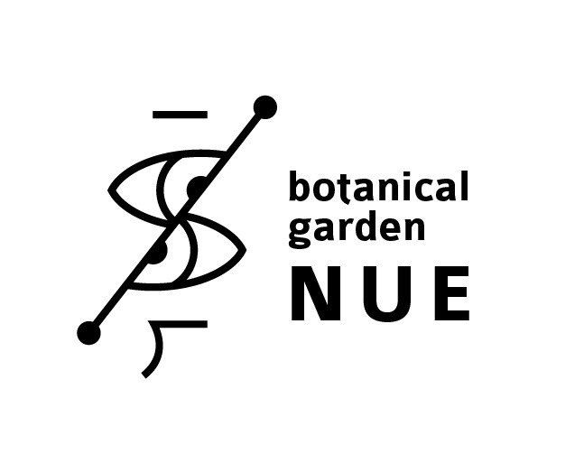 The logo to which photosynthesis was expressed. The botanical store which opens in Sapporo in Japan on June 1, 2015