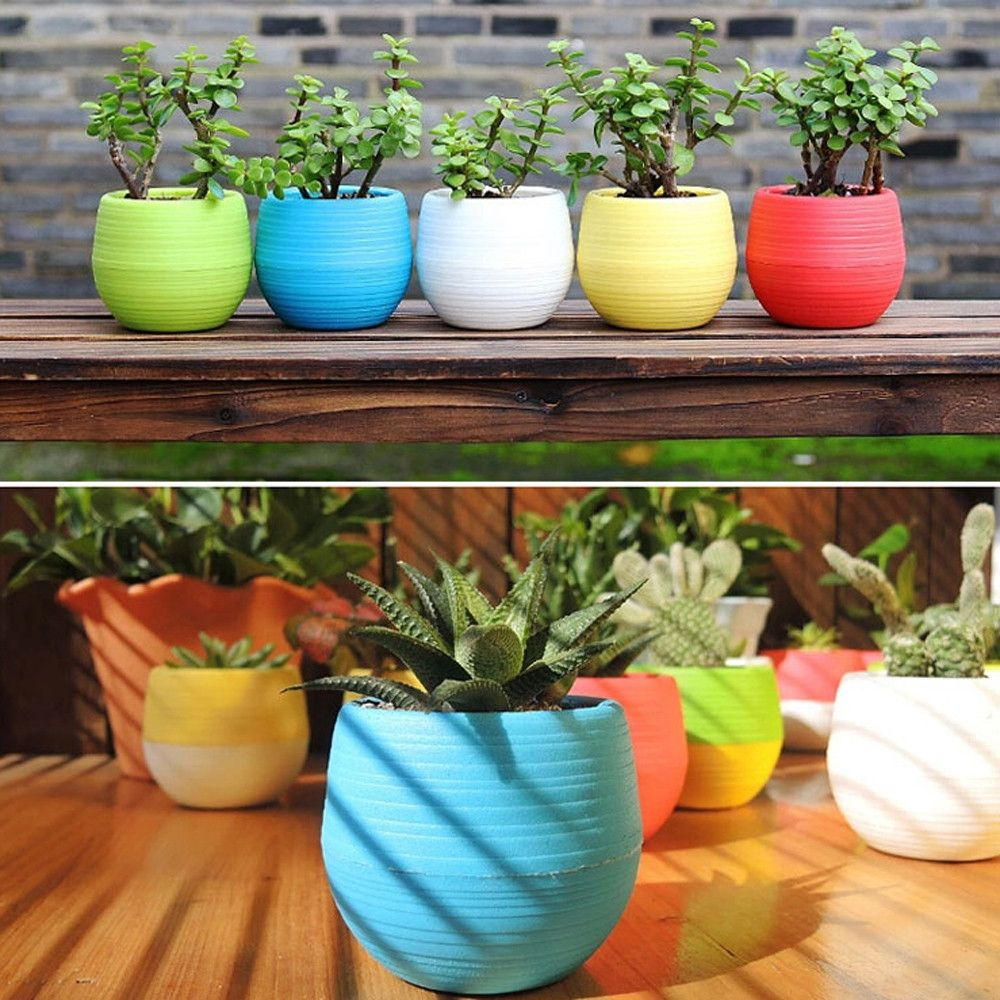 Tiny Colorful Flower Pot Planters And Pots Colorful Flower Pot Plastic Flower Pots Flower Pots