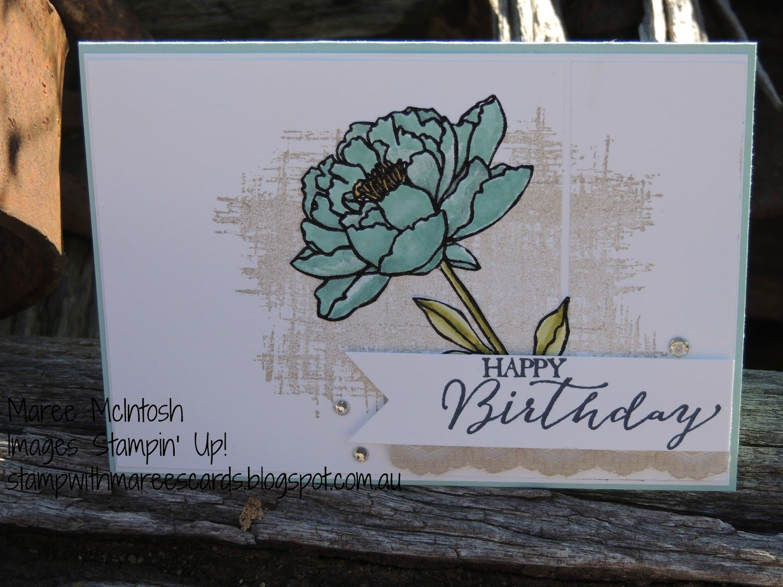 Maree McIntosh Stampin' Up Demonstrator, You've Got This stamp set, Butterfly Basics stampset,Lost Lagoon, Pool Party