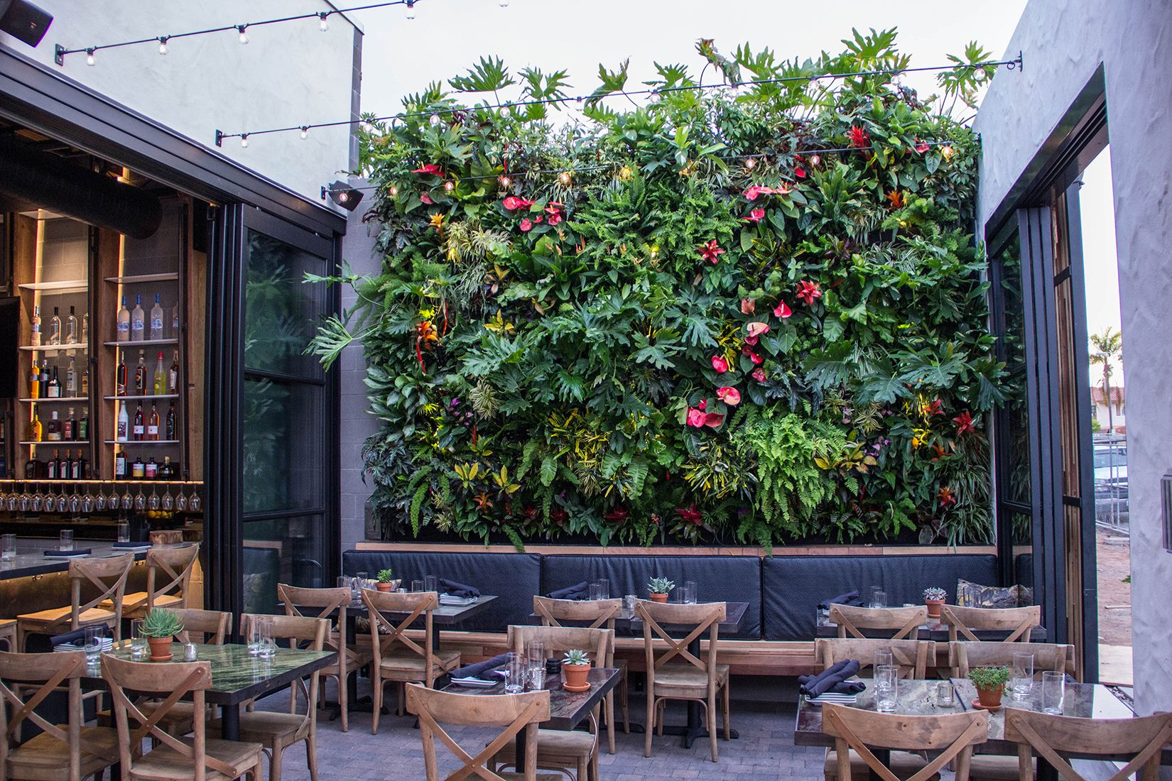 Living Green Wall at The Patio on Goldfinch | Patio ... on Green Wall Patio id=47434