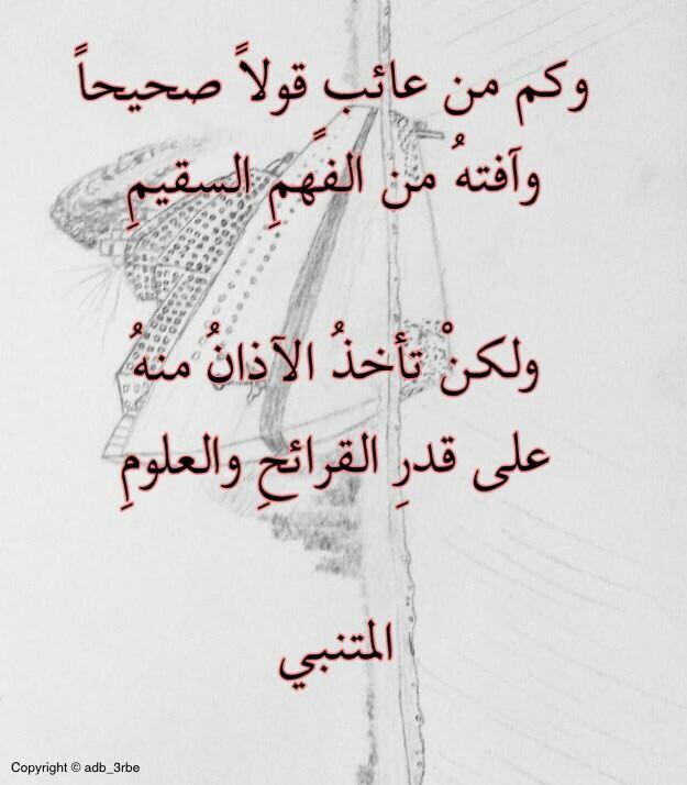 شرح تجري الرياح بما لا تشتهي السفن شعر أبو الطيب المتنبي عالم الأدب Words Quotes Quotes Words