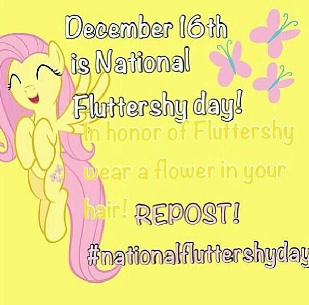 My Little Pony Birthday Quotes: National Fluttershy Day! :)