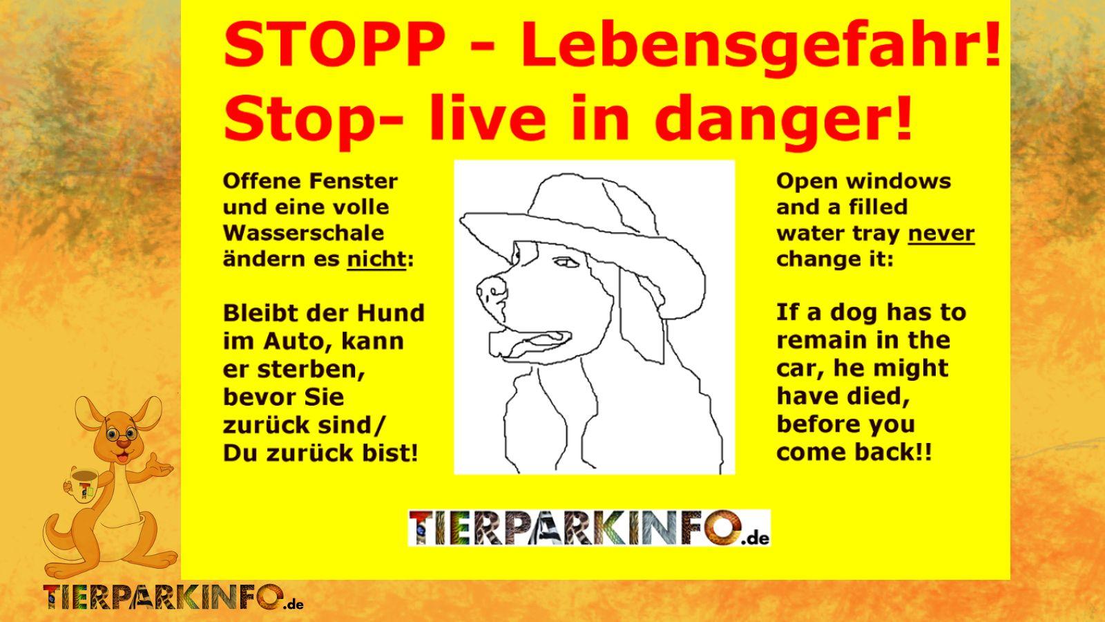 Warnung vor dem Hitzetot!