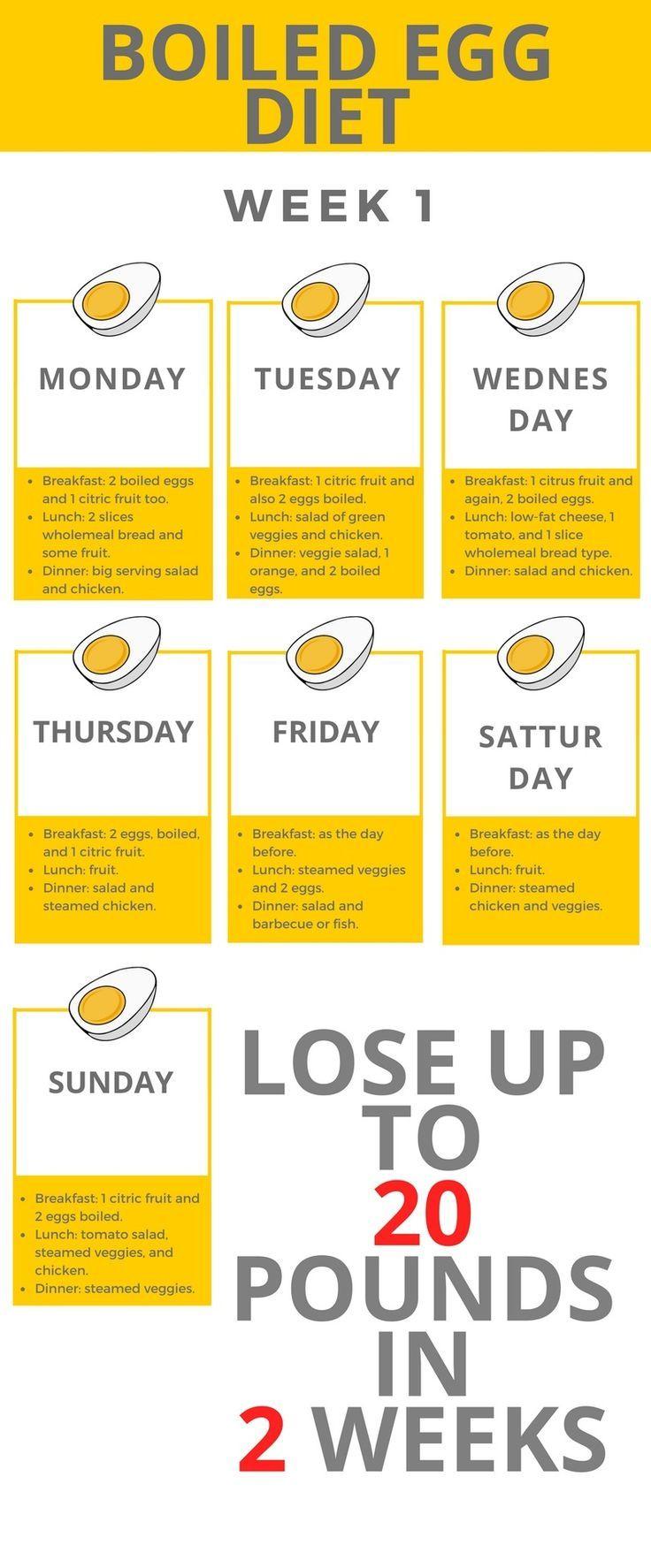Dr. phil weight loss menu plan