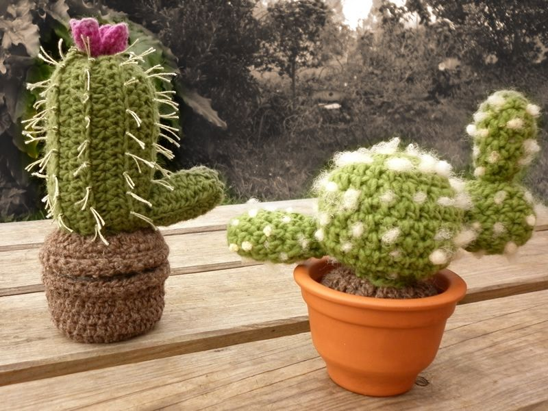 Mis cactus. El de la izquierda está cubriendo un tarro, así que sirve de compartimento secreto.