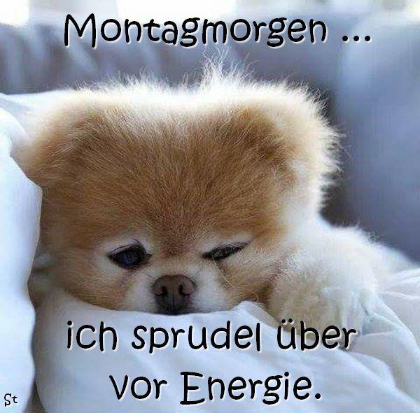 Montagmorgen, ich sprudel über vor Energie. - - #