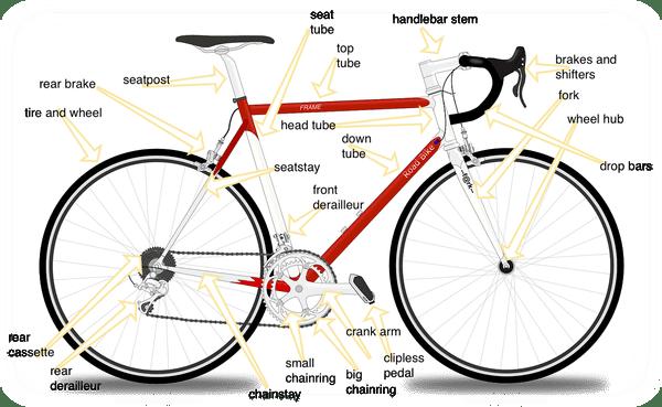 Road Biking 101 A Beginner S Guide Road Bike Rider Cycling Site Road Bike Best Road Bike Road Bike Frames