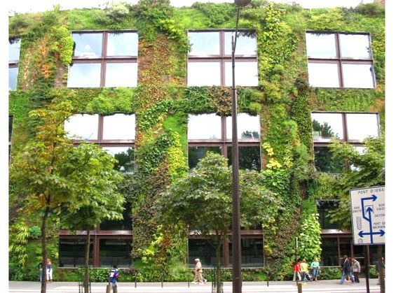 Musee du quai Branly Greenwall | Tech | Vertical garden ...